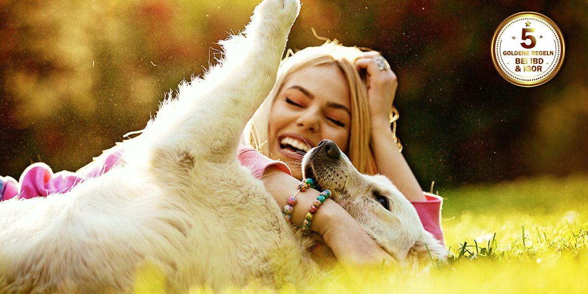 glückliches zusammenleben hund und mensch