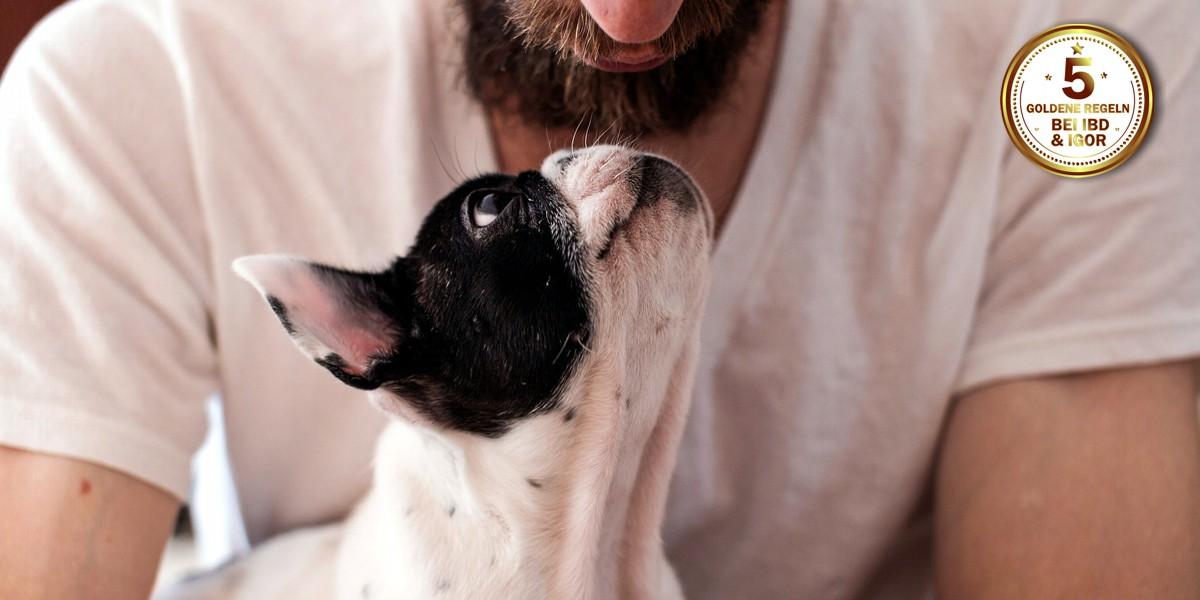 vertrauen zwischen hund und mensch